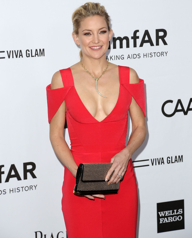 Kate Hudson amfAR 3rd Annual Inspiration Gala at Milk Studios Los Angeles, California