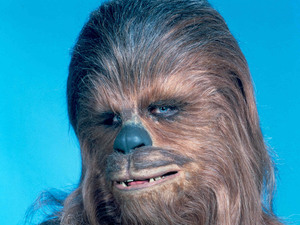 Peter Mayhew poses as Chewbacca for a Star Wars publicity shoot.