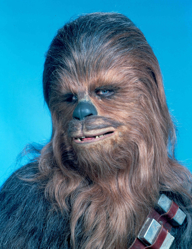 Peter Mayhew poses as Chewbacca