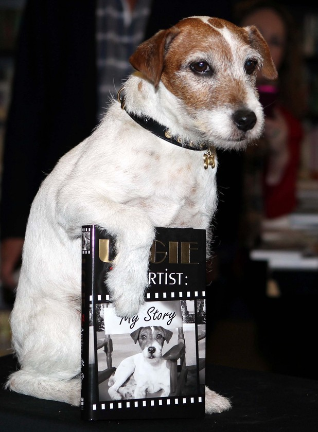 Uggie promotes his memoir, Uggie: The Artist: My Story