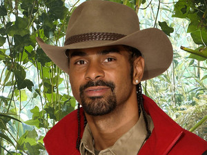 I'm A Celebrity, Get Me Out Of Here 2012: David Haye