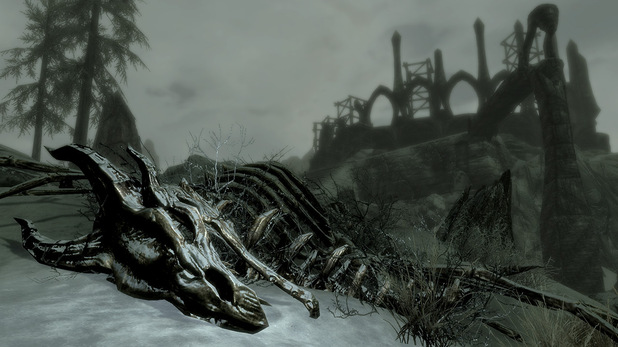 'Skyrim: Dragonborn' screenshot