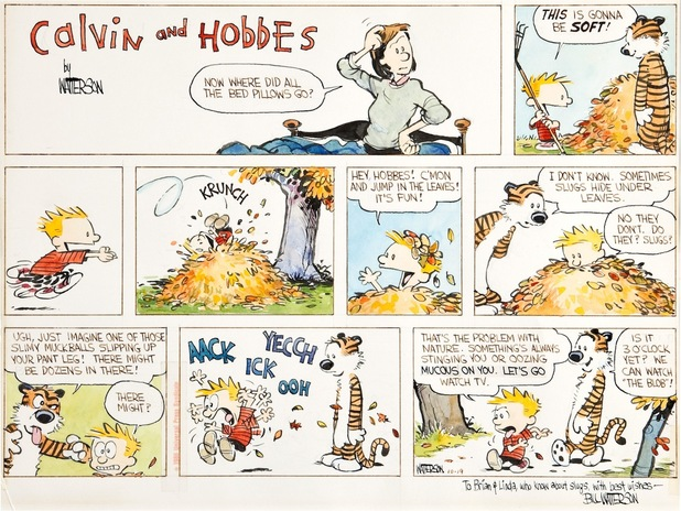 'Calvin & Hobbes' original strip