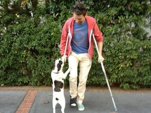Matt Bellamy picture posted on Twitter with crutches