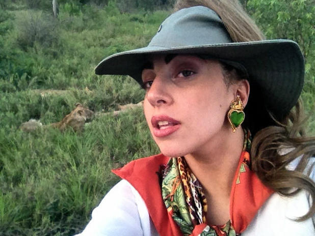 Lady Gaga on safari