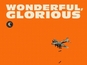 Eels: 'Wonderful, Glorious' review