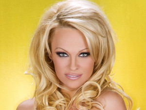 Dancing On Ice 2013: Pamela Anderson