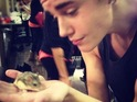 "California Hamster Association accuses the 'Boyfriend' star of ""animal cruelty""."