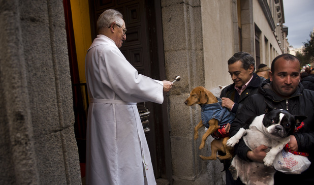A priest blesses a dog at the San Anton church during the feast of St. Anthony, Spain's patron saint of animals, in Madrid