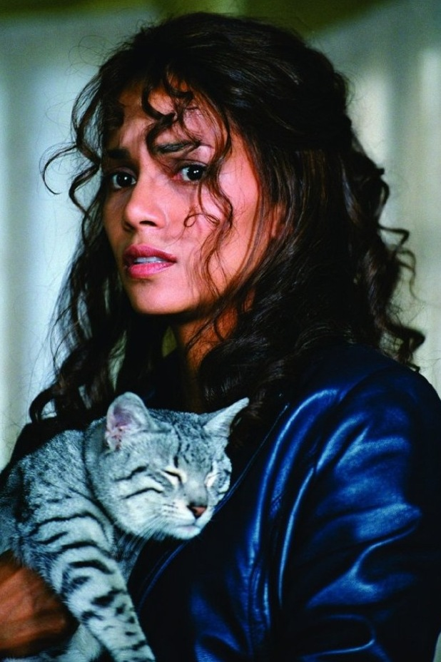 Halle Berry, Catwoman, 2004