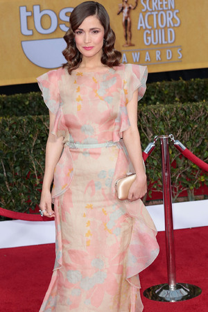 19th Annual Screen Actors Guild (SAG) Awards - Arrivals Featuring: Rose Byrne Where: Los Angeles, California, United States When: 27 Jan 2013