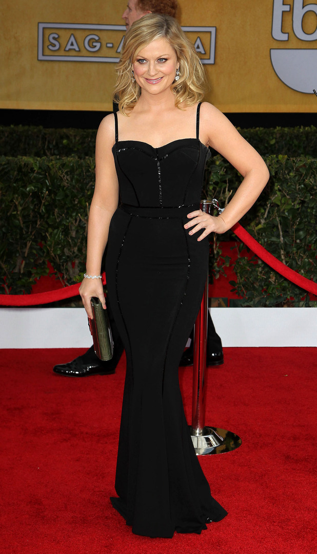 19th Annual Screen Actors Guild (SAG) Awards held at the Shrine Auditorium - Arrivals Featuring: Amy Poehler Where: Los Angeles, California, United States