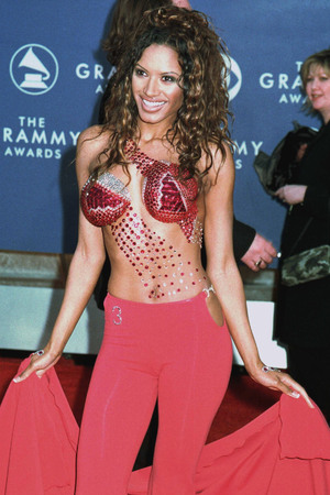 Traci Bingham, Grammy Awards 2001