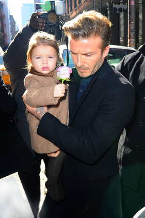 Harper Beckham, David Beckham