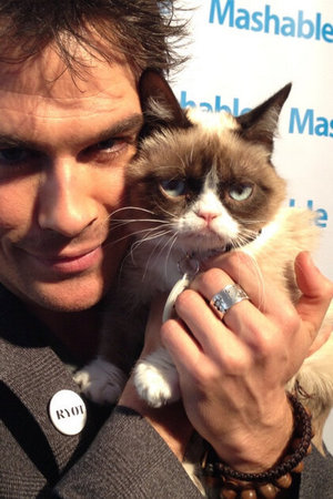 Ian Somerhalder meets Grumpy Cat