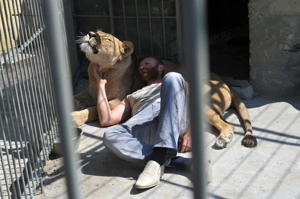 Man living in cage with lion
