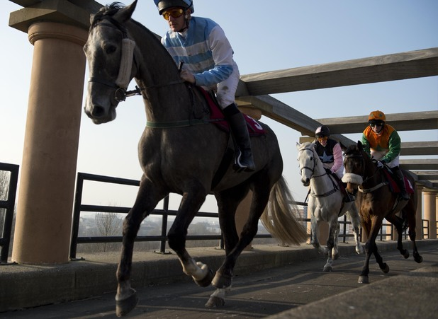 Channel 4's Grand National Trail