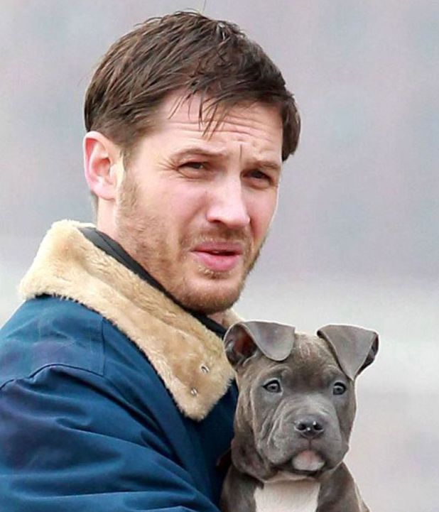 Tom Hardy, Animal Rescue, film, New York, puppy