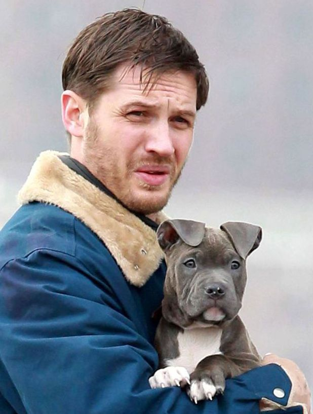 Photo of Tom Hardy & his  Dog