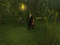 'RuneScape 3' announced - watch video