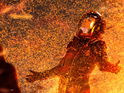 Gravity and Star Trek Into Darkness shortlisted for visual effects Oscar.