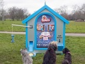 Dogs are rewarded with free treats for completing a task set by the dispenser.