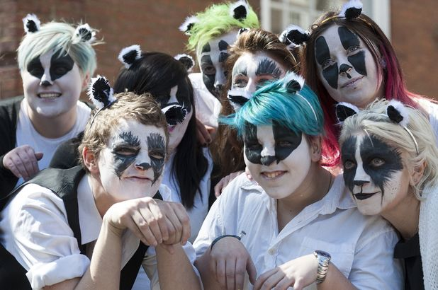 Protesters dress as badgers for flash mob