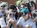 More than 50 people dance in protest at plans to cull badgers.