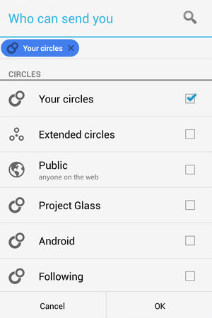 Google Play Games 'circles'