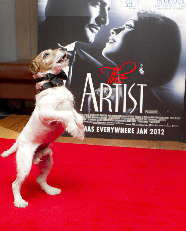 The Artist, Palm Dog, Cannes Film Festival 2011