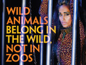 The late actress shot two campaigns for PETA India.