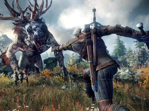 'The Witcher 3: Wild Hunt' screenshot