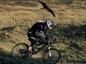Gee Atherton takes on a peregrine falcon in a new Red Bull challenge.