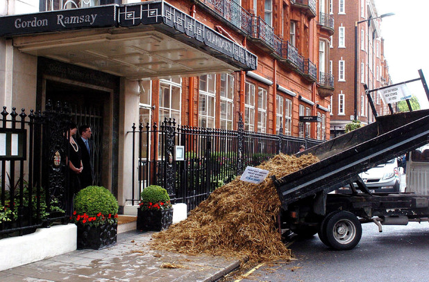 The staff at Claridge's close Gordon Ramsay's restaurant in central London after protestors from People for the Ethical Treatment of Animals (PETA) dumped horse manure outside the main entrance in protest over horse meat being sold on menus.