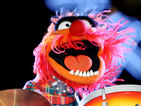 Whiplash 2: JK Simmons' jazz tutor meets his match in Muppets' Animal