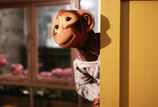 'Pipkins' - Topov The Monkey
