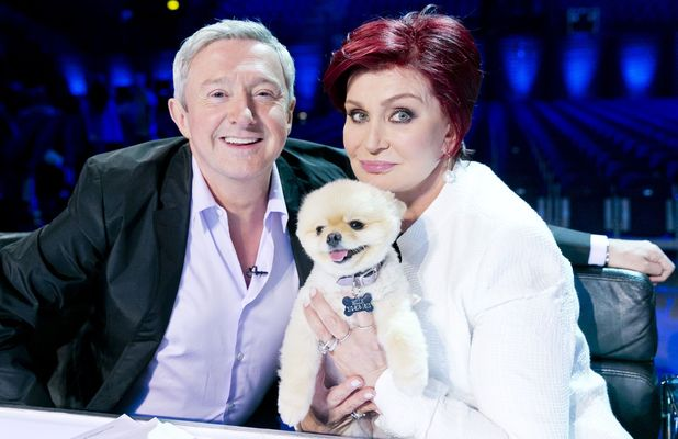 Louis Walsh, Sharon Osbourne and her pet dog Bella at 'The X Factor' Boom Camp auditions