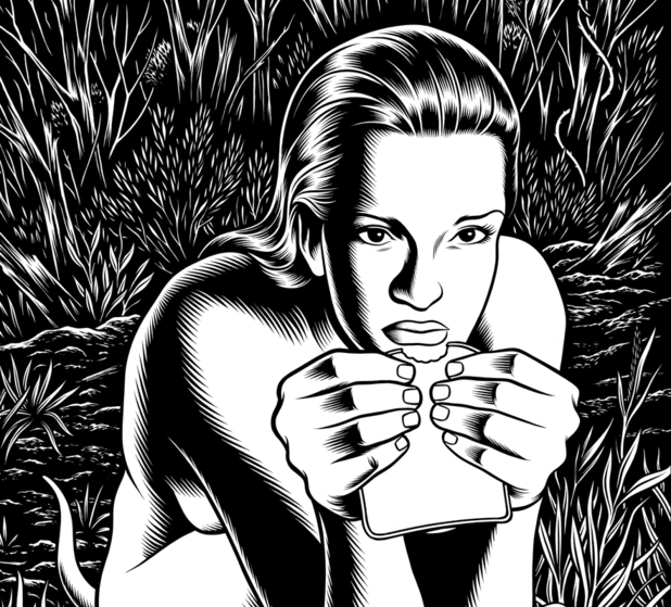 Charles Burns 'Black Hole'