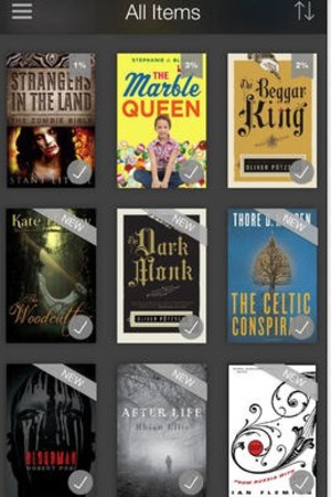 'Kindle' app screengrab.