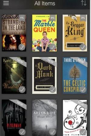 'Kindle' app screengrab.