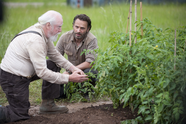 Scott Wilson as Hershel Greene and Andrew Lincoln as Rick Grimes in 'The Walking Dead' S04E01: '30 Days Without An Accident'