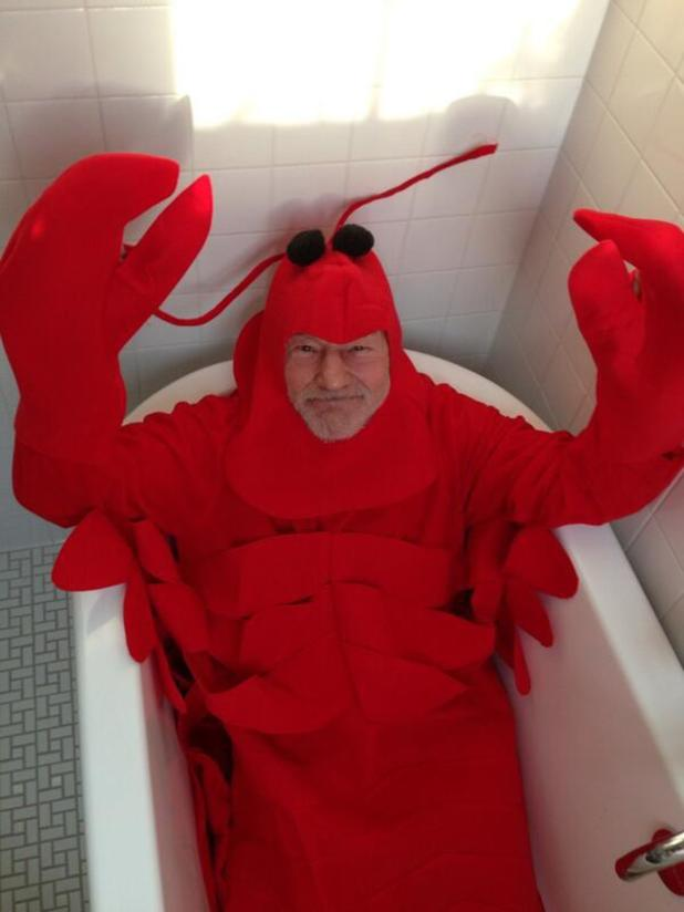 Sir Patrick Stewart as a lobster