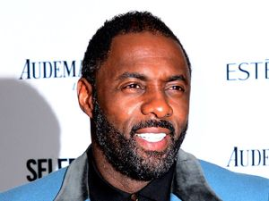 Harpers Bazaar 'Woman of the Year' awards 2013, London, Britain - 05 Nov 2013 Idris Elba