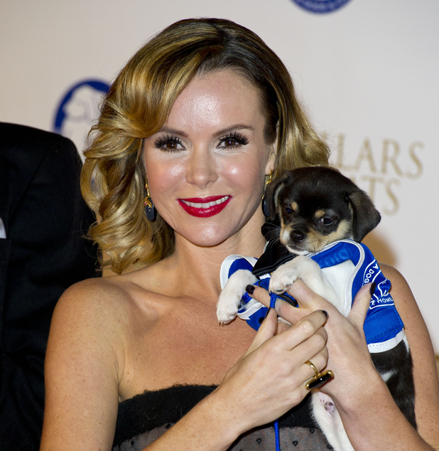 Amanda Holden at the Collars and Coats Ball, in aid of Battersea Dogs and Cats Home, at Battersea Evolution in London.