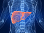 3D printer generates living liver