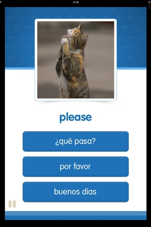 Cat Spanish screenshot