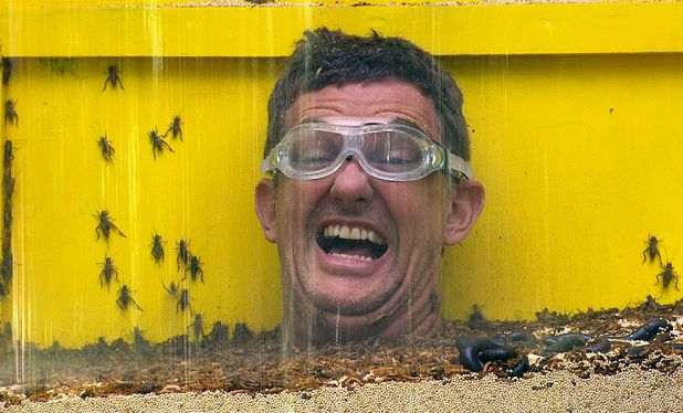 Matthew Wright takes part in the Bushtucker Trial 'Up To Your Neck In It'