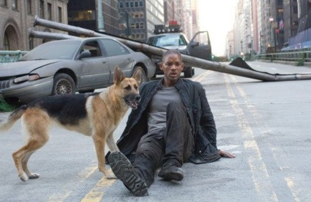 Will Smith, Sam the dog, I am Legend