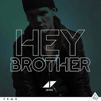 Avicii 'Hey Brother' single artwork.