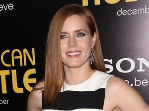 "Amy Adams - ""American Hustle"" - Los Angeles Premiere at Directors Guild Theatre"